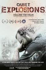 Quiet Explosions: Healing the Brain